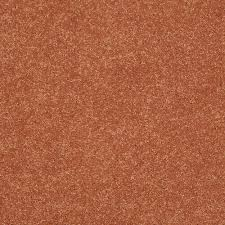 home decorators collection carpet sample cressbrook iii in