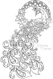 paisley pattern drawing at getdrawings com free for personal use