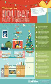 33 best carpenter ants exterminator seattle images on pinterest