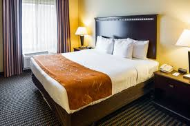 Comfort Inn Rochester Minnesota Hotel Near Mayo Clinic Comfort Suites In Rochester Mn