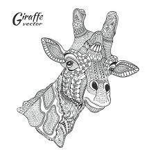 giraffe coloring pages free printable baby adults art giraffe