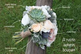 wedding flowers rustic what the heck is that flower 4 butterfly philosophy sydney