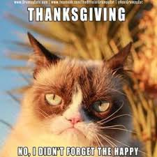 25 hilarious thanksgiving memes memes wapppictures