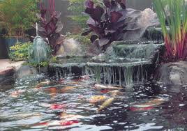 Backyard Pondless Waterfalls by Waterfall Cleaning Supplies For Maintaining A Clean And Clear