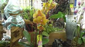 Family Pet And Garden Center - parties extra mistletoe market happening now video newsok com