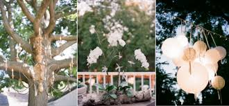 Orchid Decorations For Weddings Beautiful White Orchids Arranged In Clay Pots For Wedding