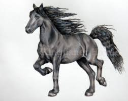 Black Horse Mustang Realistic Animals Etsy