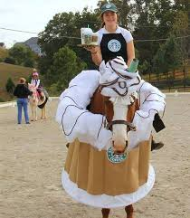 Halloween Costumes 11 12 Olds 25 Horse Costumes Ideas Horse Halloween