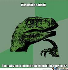 Funny Softball Memes - softball logic by recyclebin meme center