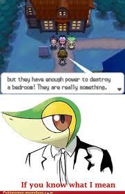 If Ya Know What I Mean Meme - pokémemes if you know what i mean pokemon memes pokémon