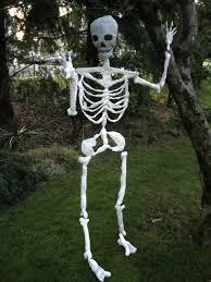 halloween posable skeleton halloween skeleton decorations