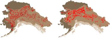 State Of Alaska Map by Large Wildfires A Factor In Climate Equation Uaf News And