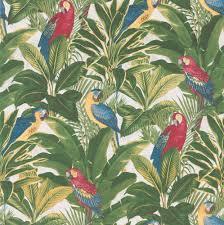 albany wallpapers parrots u0026 palms 10 05m x 0 53m