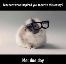 How To Write Memes - funny memes teacher what inspired you to write this essay