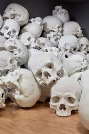 mueck installs 100 skulls at the national gallery of
