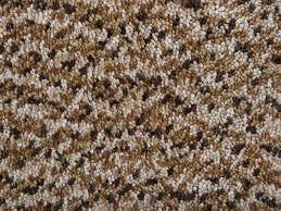 teppich 300 x 400 teppich beige 300x400 cm shaggy polyester oren