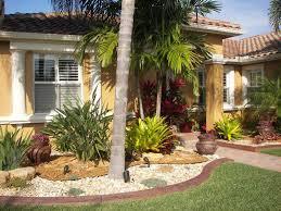 palm tree landscaping ideas front yard u2014 home design ideas