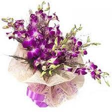 purple orchid flower imshopping rediff imgshop 300 400 shopping pix