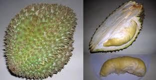 Ugly Green Phuket Thai Fruits