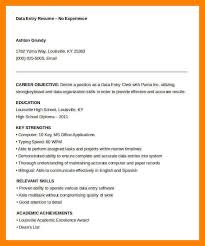 Data Entry Resume 8 Typing A Resume Job Apply Form