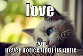 Lost Love Meme - lost loved one memes lost love love you never notice until its