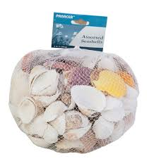 assorted seashells panacea products assorted sea shells 3 lbs joann