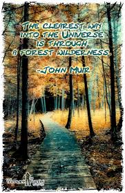 john muir fire quote 93 best picture with quote images on pinterest inspiration