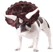Halloween Costume Large Dogs Triceratops Dog Costume Costumes Dog Doggies