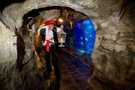 what u0027s on exploris aquarium u0026 reptile visitors centre u0026 seal