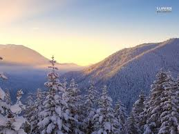 winter snow covered fir trees sky mountains nature beautiful