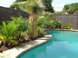 exterior contemporary wide pool with green tree decor pool side