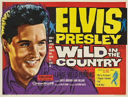 for elvis cd collectors in the country 1961
