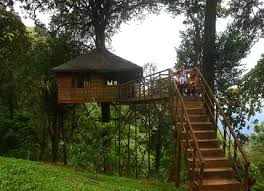 5 winter tree house vacations in india skymet weather services