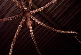Chandelier Ideas Make An Easy Octopus Chandelier U2014 Best Home Decor Ideas