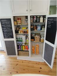 Storage Bins For Shelves by Diy Kitchen Pantry Shelves Practical Dish Drawers Kitchen Pantry