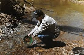 the secrets of indiana gold panning wildindiana com