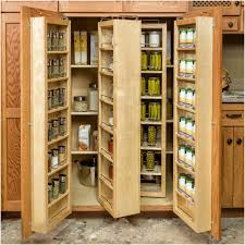 storage solutions for kitchen pantry home design inspirations