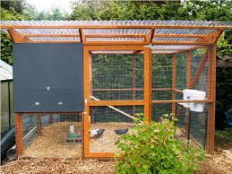 easy backyard chicken coop ideas u2014 emerson design