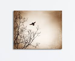 brown bird canvas black beige bird flying tree branches wings