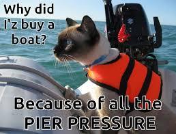 Cat Buy A Boat Meme - pier pressure cat meme shared by yanito freminoshi