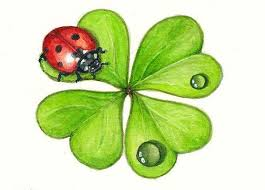 392 best art with ladybugs u0026 spiders images on pinterest