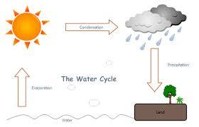 Water Cycle Worksheet Pdf Water Cycle Free Water Cycle Templates