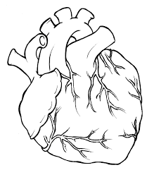 photos heart drawing clip art library