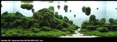 Japanese Aquascape by Avatar Fish Tank Google Search Design Aquascape Pinterest