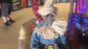 panda costume spirit halloween spirit halloween sitting scarecrow youtube
