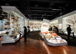 Interior Design Courses Qld Design Institute Of Australia Dia Winners 2017 Australian