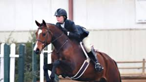 How To Tell If A Horse Is Blind How Do I Get Rid Of Rain Rot Expert How To For English Riders