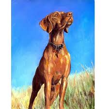 Vizsla Halloween Costume Similar Vizsla Hound Dog Art Print Original Painting