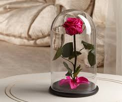 beauty and the beast rose pink gift box rose in glass