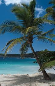 Where Is The Black Sand Beach Best 25 White Sand Beach Ideas On Pinterest Sand Beach Black